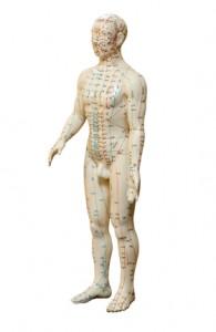 body acupuncture dylan stein new york