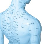 Acupuncture points on the back, neck and jaw